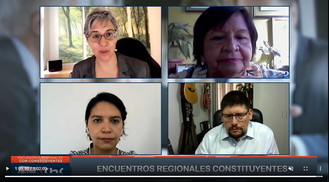 Constituyentes de Antofagasta participaron en conversatorio web nacional noticias